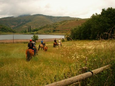 2-hour horse riding trip in Serra de Guarda