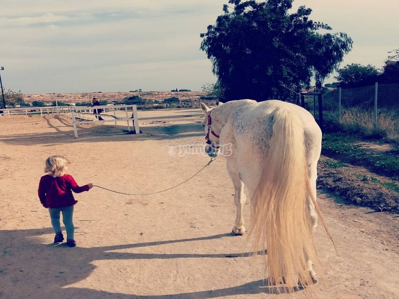 Nina cuidando del caballo