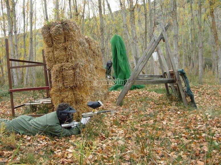 Apuntando tras la alpaca de paja