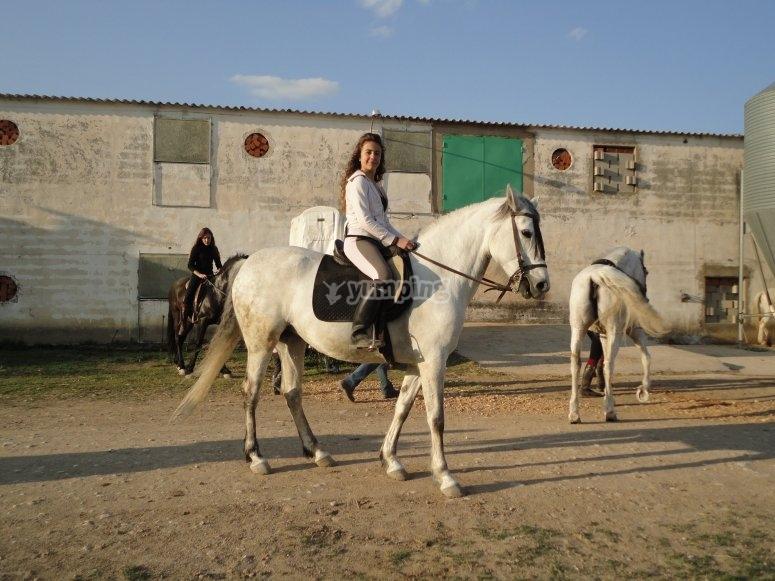 Montando a caballo en pista