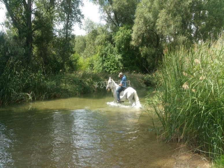 Cruzando el río a caballo