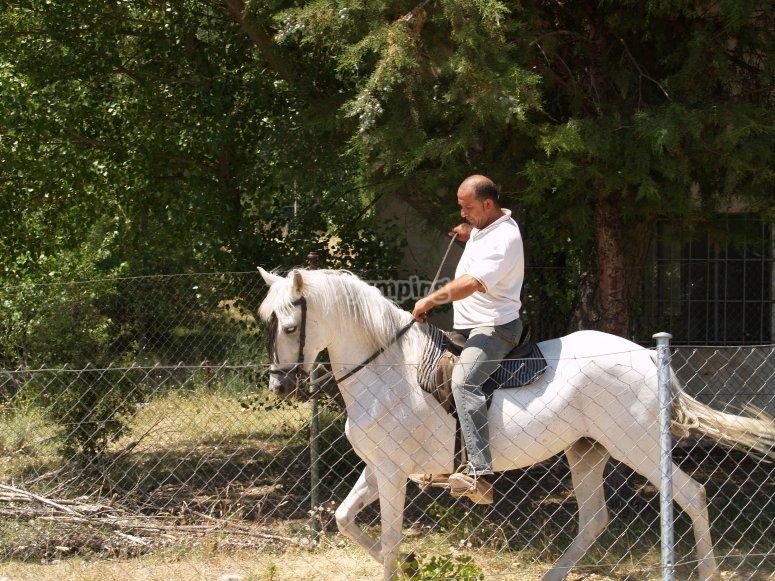 Sesión a caballo