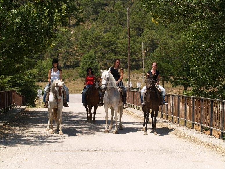 Grupo de amigos a caballo