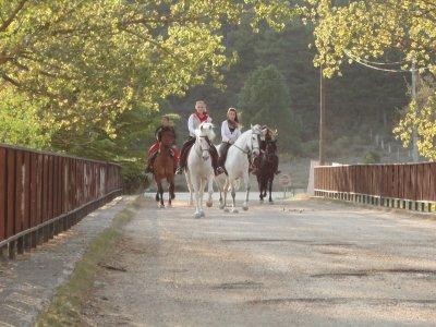 Ruta a caballo en la sierra conquense 75 minutos