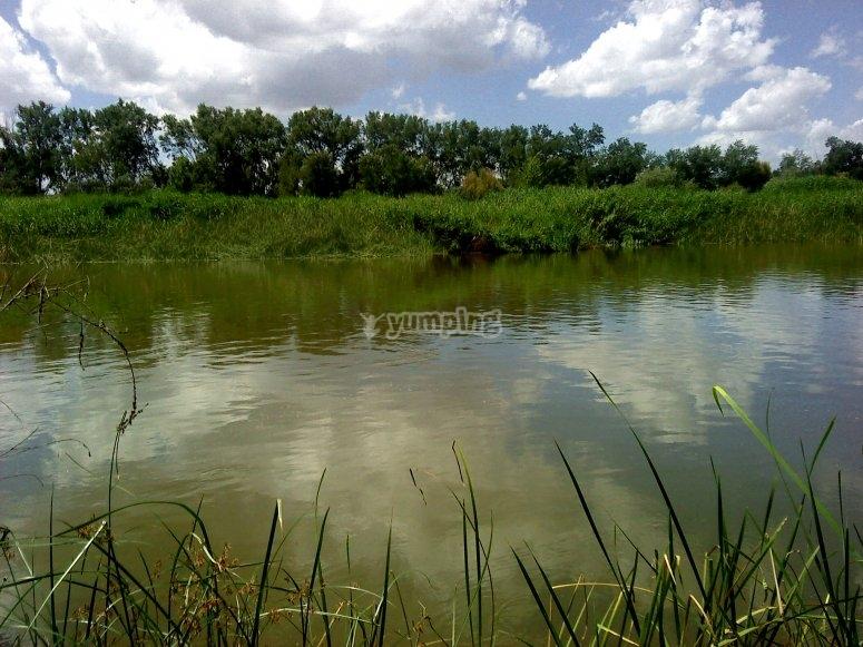 Rio Tajo en su paso por Castilla La Mancha