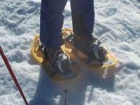 雪鞋d enieve