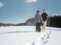 通过原始雪道的短途旅行