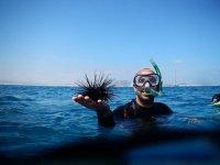 chico ensenando un erizo de mar