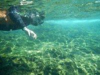 hombre con gafas de buceo practicando snorkel