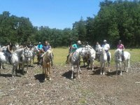 Horseback riding bachelor parties, Torrecaballeros