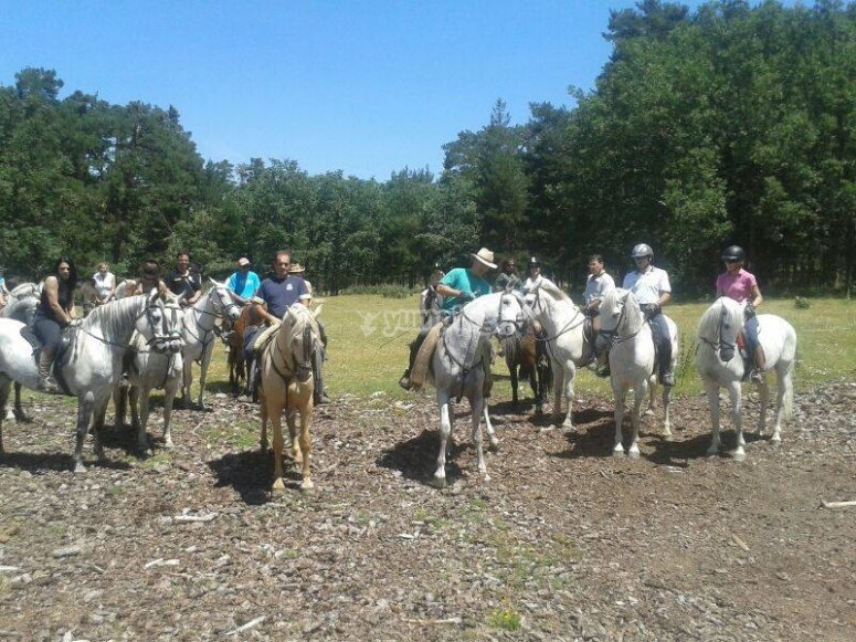 Group riding a horse in the range