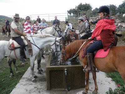 骑马在圣伊尔德丰索用食物