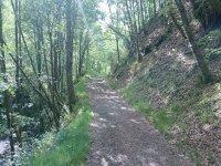 Una ruta de senderismo en Asturias