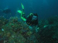 Immersione con pesci