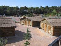 Campamento de ingles en Cofrentes