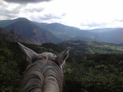 Paseo a caballo por Pla de Corts de 1 día