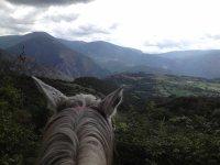 在Pla de Corts上骑马