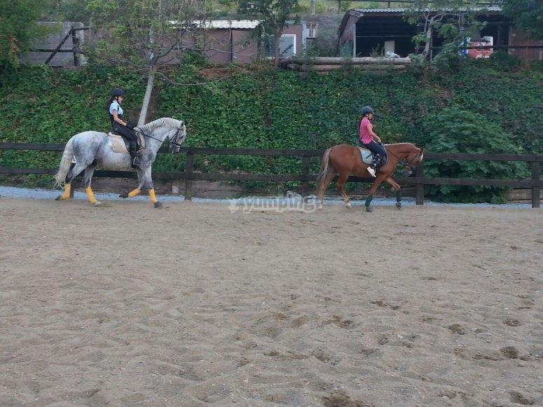 Equitazione durante la Settimana Santa