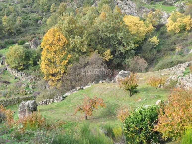 惊人的农村环境中的埃斯特雷马杜拉为期两天的训练营通过在射箭指着树木999-指导参观地狱峡谷