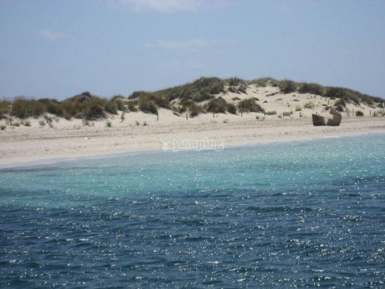 Espalmador海滩的水域