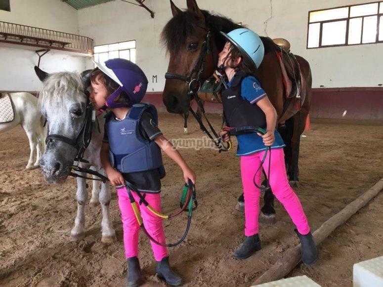 Amigos de los caballos