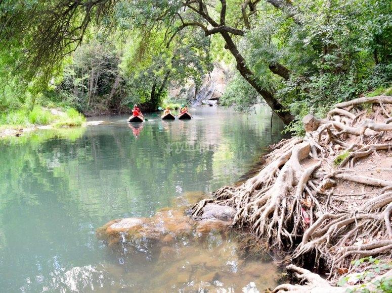 Paseo tranquilo por aguas fluviales