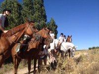Montados en caballos pardos y blancos