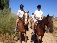 Contacto con los caballos