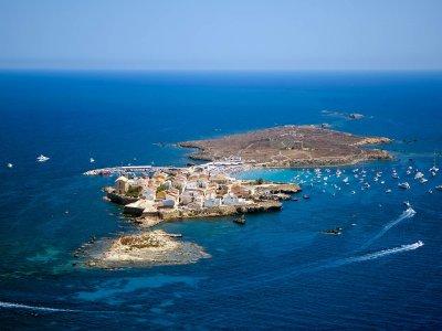 Hacer snorkel en Isla Tabarca para adultos 3 horas