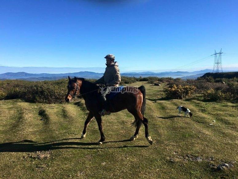 Paseando con el caballo por los alrededores