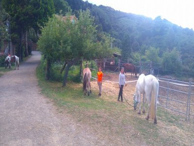 Bonus mensile per seminario equestre a Trapagaran