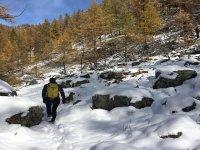 Caminando sobre la nieve