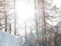 Soleado día para una ruta con raquetas de nieve