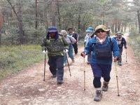 Grupo de senderistas hacia Santiago de Compostela
