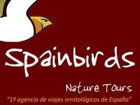 SpainBirds Nature Tours