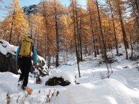 Espectacular ruta con raquetas de nieve