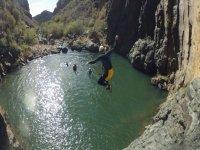 在金丝雀中的水峡谷
