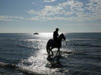 Adentrándose al mar con el caballo