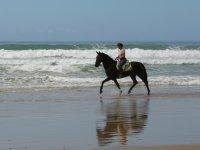 En la orilla del mar sobre el caballo