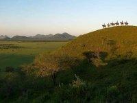 Rutas a caballo por el Valle de Alcudia