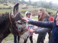 Campamento multiaventura en Jaén de 7 días