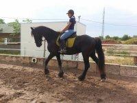 aprendiendo a montar