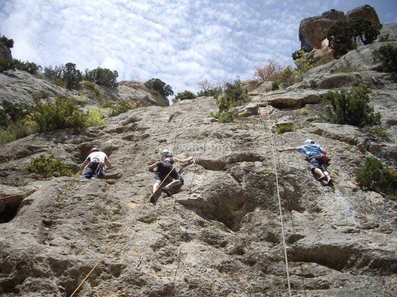 Grupo escalando con cuerdas
