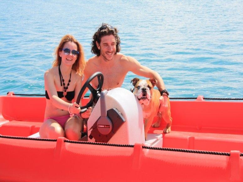 Navegando con nuestra mascota