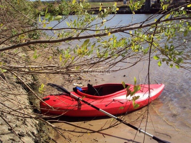 Paseos en kayak para los peques