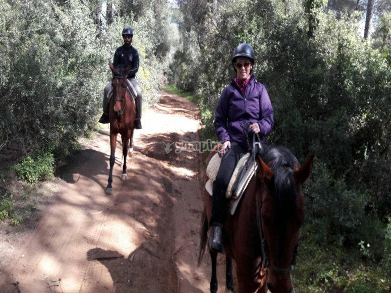 Enjoying a horse riding trip for couples