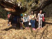 aula naturaleza y busqueda por pistas