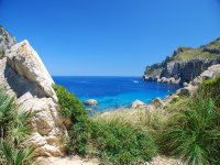 Paseo marítimo por Mallorca 4h en julio y agosto