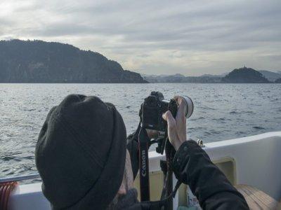 Whale Watching+Ecotourism San Sebastián 90min