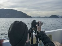 Ecoturismo en San Sebastián avistar cetáceos 90min